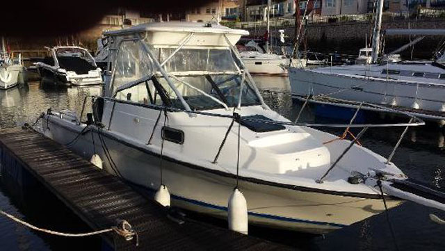 Used powerboat: Trophy 25 Walkaround