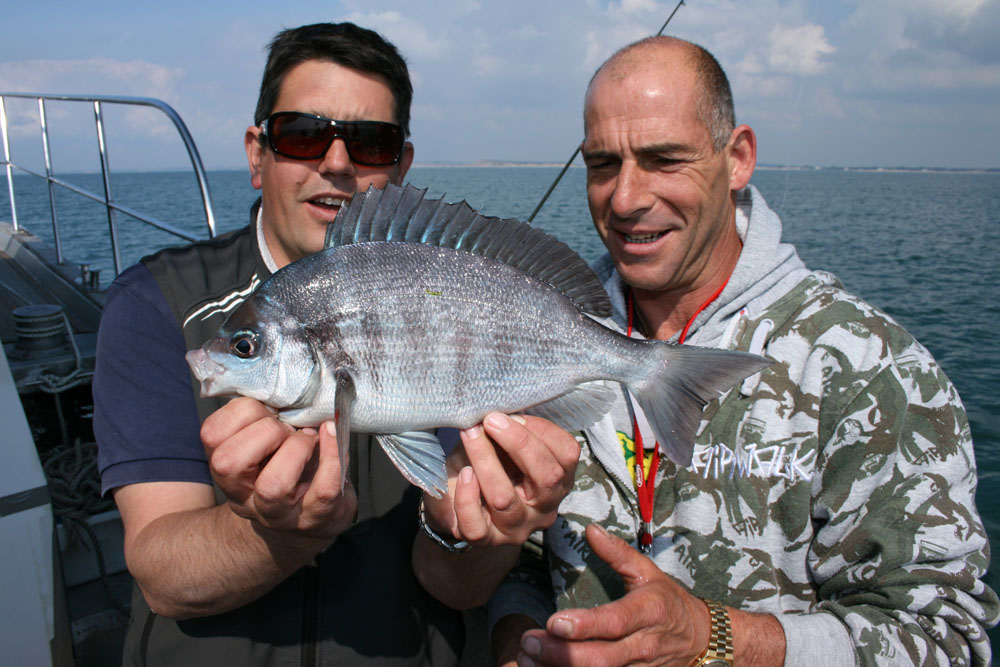Fishing for black bream – guide to boat fishing in the UK