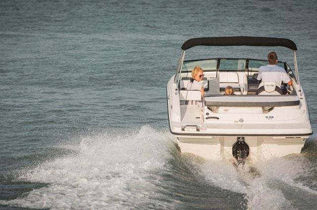 Sterndrive option: Sea Ray 19 SPX