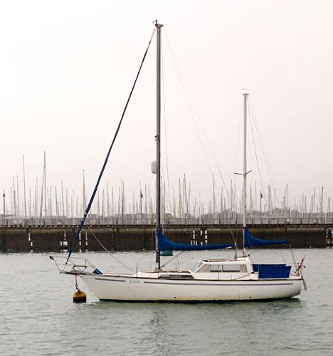 Colvic Victor 34: deck saloon yacht