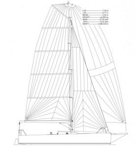 Life 7.5 sailplan