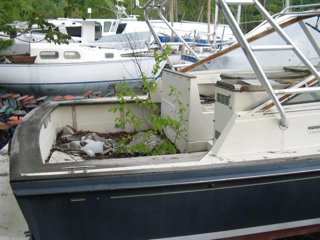 Boat Surveys An Essential Guide Boatscom